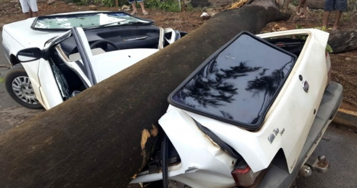 Fortes ventos derrubam árvore que esmaga carro Sorriso
