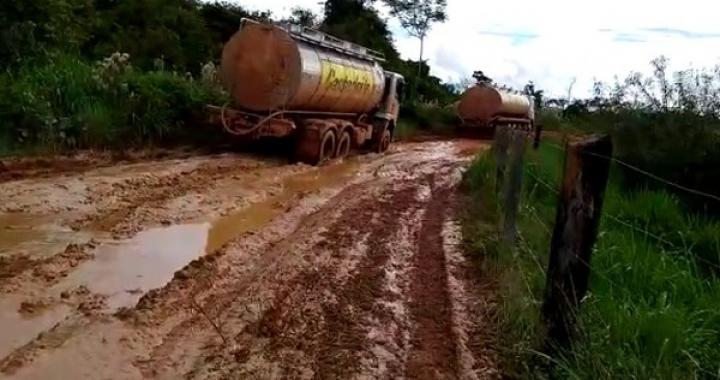 Madeireiras entram com ação contra restrição a veículos pesados na BR-174 em MT e dizem que frete fica 30% mais caro