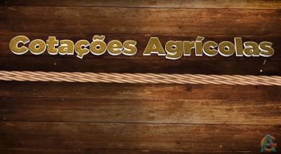 Confira as Cotações Agrícolas do dia 24 de Setembro de 2021- Apresentação Beatriz Vougado