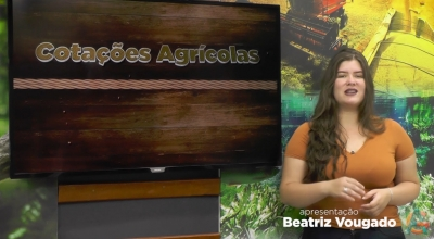 Confira as Cotações Agrícolas do dia 26 de Outubro de 2021 Apresentação Beatriz Vougado